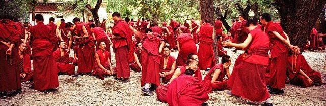 ״מגלים את הבודהיזם״ מודול 11 התמרת בעיות (Transforming problem)